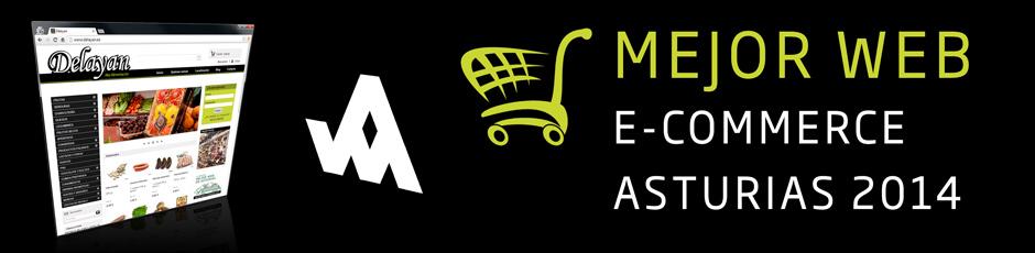 Mejor Tienda Online de Aasturias 2014