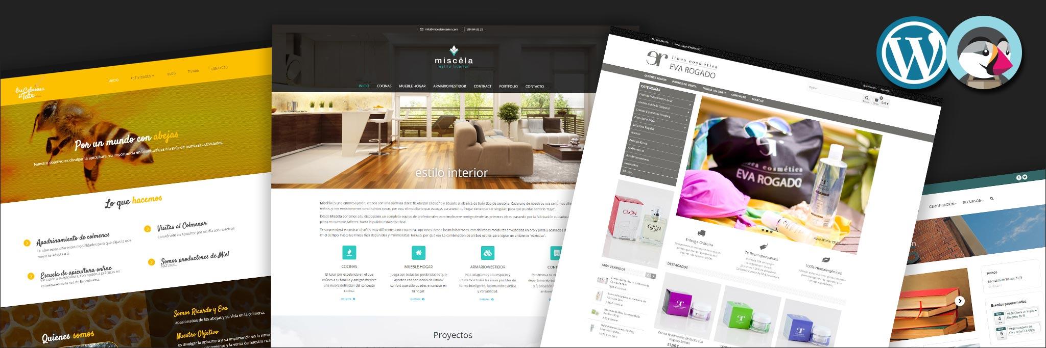 Web y E-Commerce